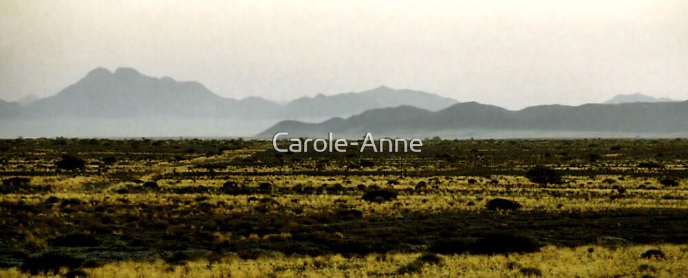 Dreamy Landscape, Namibia by Carole-Anne