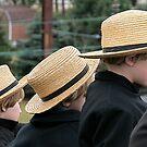 Amish Emblems by Mary Fox