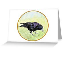Crow, Birds of Hepburn, 2011 Greeting Card