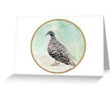 Bronze Winged Pigeon, Birds of Hepburn, 2011 Greeting Card