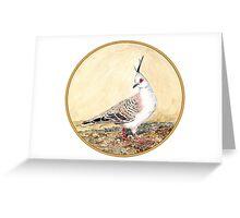 Crested Pigeon, Birds of Hepburn, 2011 Greeting Card