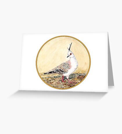 Crested Pigeon, Birds of Hepburn, 2011 Greeting Card