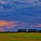 Empty cattle train under an angry evening sky by Sue Downey