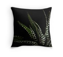 Haworthia Aloe Vera cactus succulent plant white spots Throw Pillow