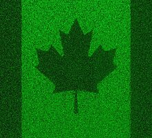 Grass flag Canada by GrandeDuc