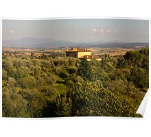 View from Sienna Poster