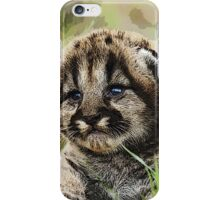 Wild nature - cubs iPhone Case/Skin