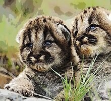 Wild nature - cubs by Wiedzminka