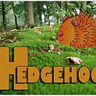 Alphabet ZOO - HEDGEHOG by Koekelijn