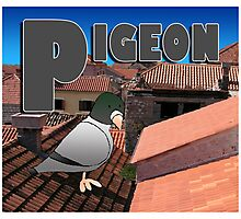 Alphabet ZOO - PIGEON Photographic Print