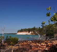 The magic of Arnhem Land - white cliffs, green trees and blue sea. by georgieboy98