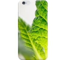 Green leaf iPhone case iPhone Case/Skin