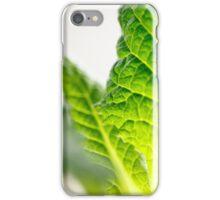 Green leaf iPhone case iPhone Case/Skin