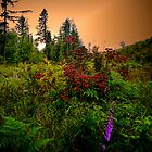 Red, Gold, and Green by Charles &amp; Patricia   Harkins ~ Picture Oregon