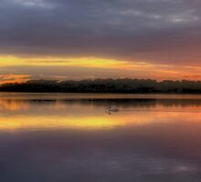 Revelations - Narrabeen Lakes, Sydney Australia (50 Exposure HDR Panoramic) - The HDR Experience by Philip Johnson