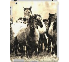 Wild nature - horses iPad Case/Skin