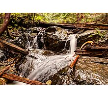 Brook on the Path to Heather Lake Photographic Print