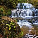 Purakaunui Falls - Southland, South Island, New Zealand by Matthew Kocin