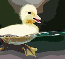 Wild nature - duck by Wiedzminka