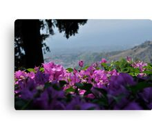 Flora in Sicily Canvas Print