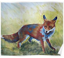 Fox Painting Poster