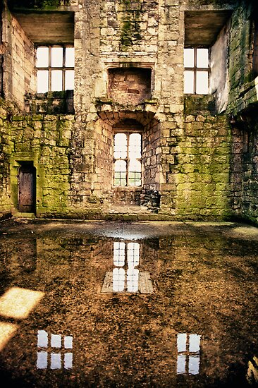Tudor Reflections by Rory Garforth