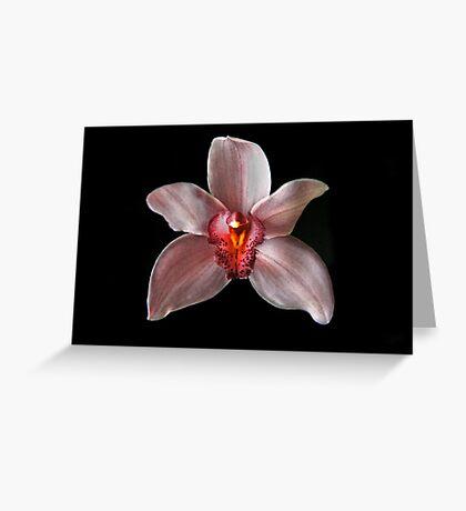White Cymbidum Portrait Greeting Card