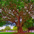 Tree in my Neighborhood by dez7