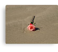 A single rose on the beach Canvas Print