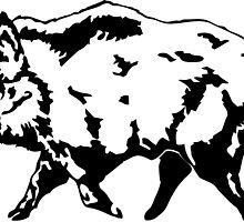 Wild boar by Port-Stevens