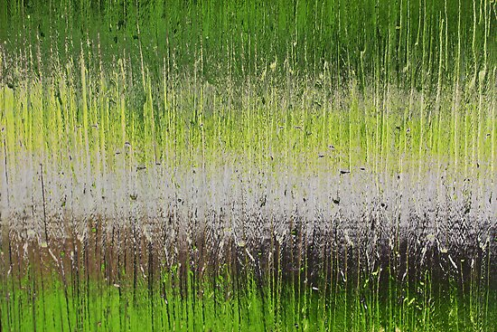Green Abstract by Janet Clark