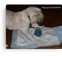 Wrapping The Ball-Ball Canvas Print