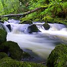 Golitha Falls by mikebov