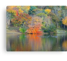 NATURE ALWAYS WEARS THE COLOR OF THE SPIRIT. Canvas Print
