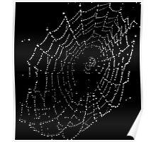 Spider Web B & W Poster