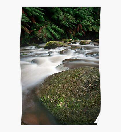 Rocks and Rainfall - Noojee, Victoria, Australia Poster