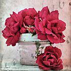 Vintage Roses by Shelly Harris