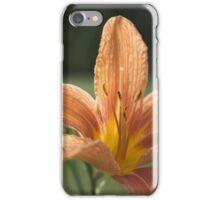 Sunlight on the Flower iPhone Case/Skin