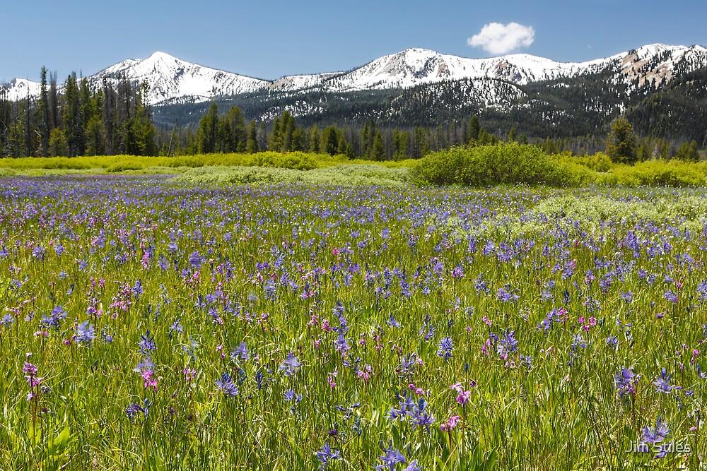 Sawtooth Mountain Wilderness by Jim Stiles