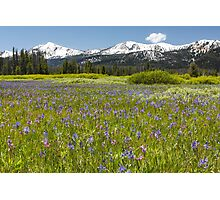 Sawtooth Mountain Wilderness Photographic Print