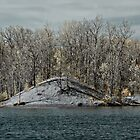Hawk Island in Color-IR II by eNixon Photography