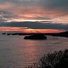 Bay Of Martyrs. Great Ocean Road, Victoria, Australia. by Ralph de Zilva