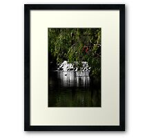 Waterfall and Trees Framed Print