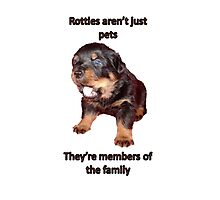 Rottweilers Are Not Just Pets Photographic Print