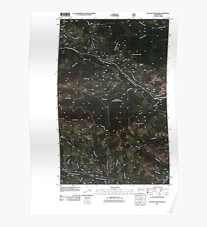 USGS Topo Map Washington State WA Bulldog Mountain 20110509 TM Poster