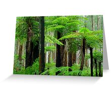 Black Spur Forest Greeting Card