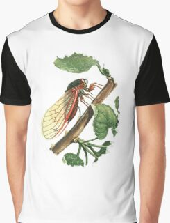 Cicada Illustration Graphic T-Shirt