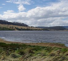 Windy day at Craigbourne Dam by Traffordphotos