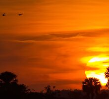 Sunset on Fire by William C. Gladish