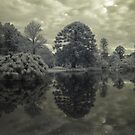 Werribee Mansion - Ext IR Reflections on Beauty by lightsmith